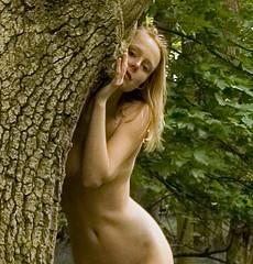 woodnymph